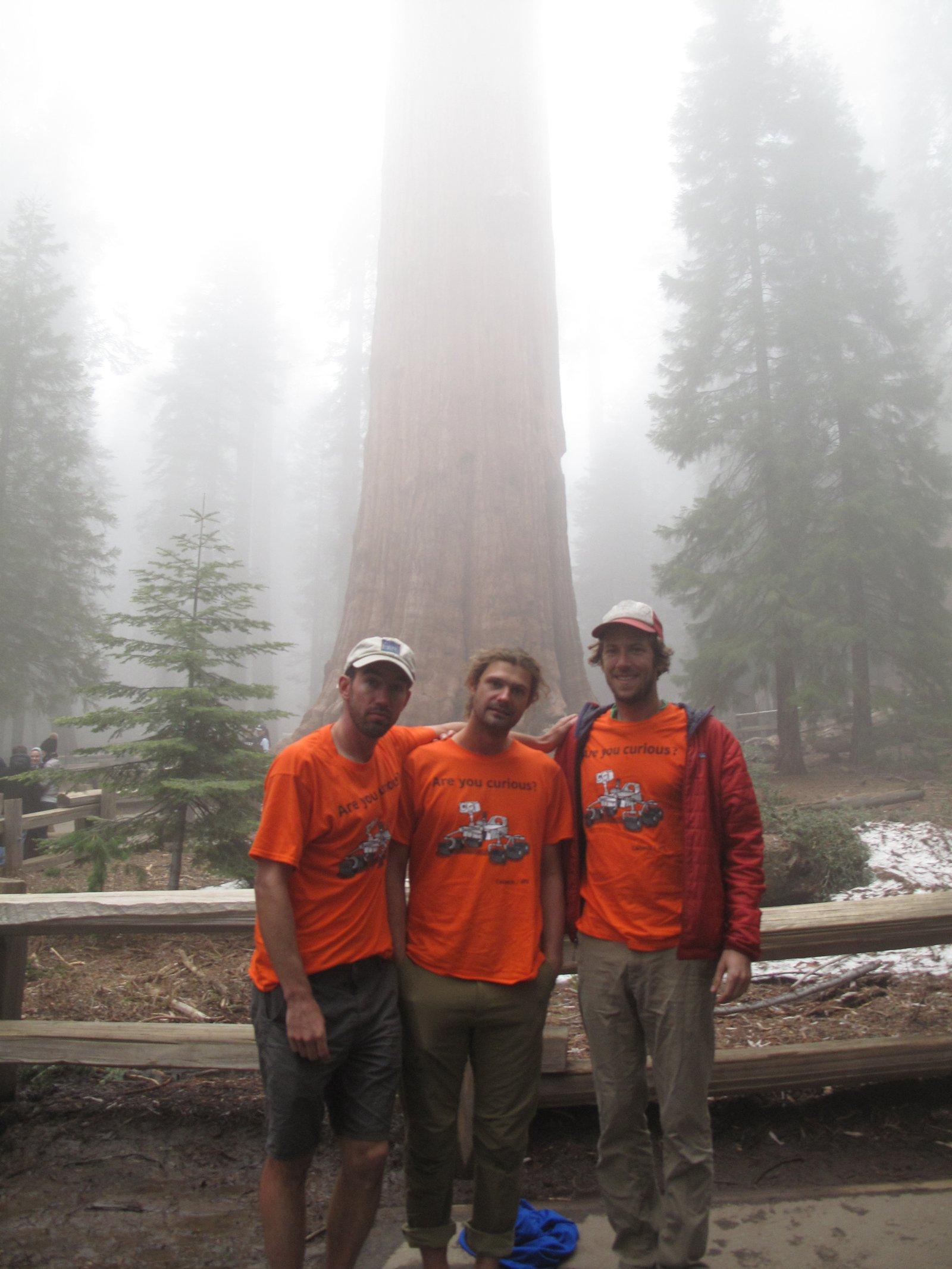 Sequoia_Whitney_Sierra_Traverse_3