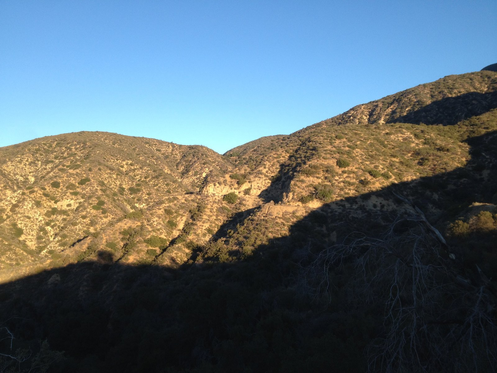 Looking up towards the Brown Mountain Saddle from Brown Mountain fire rd.