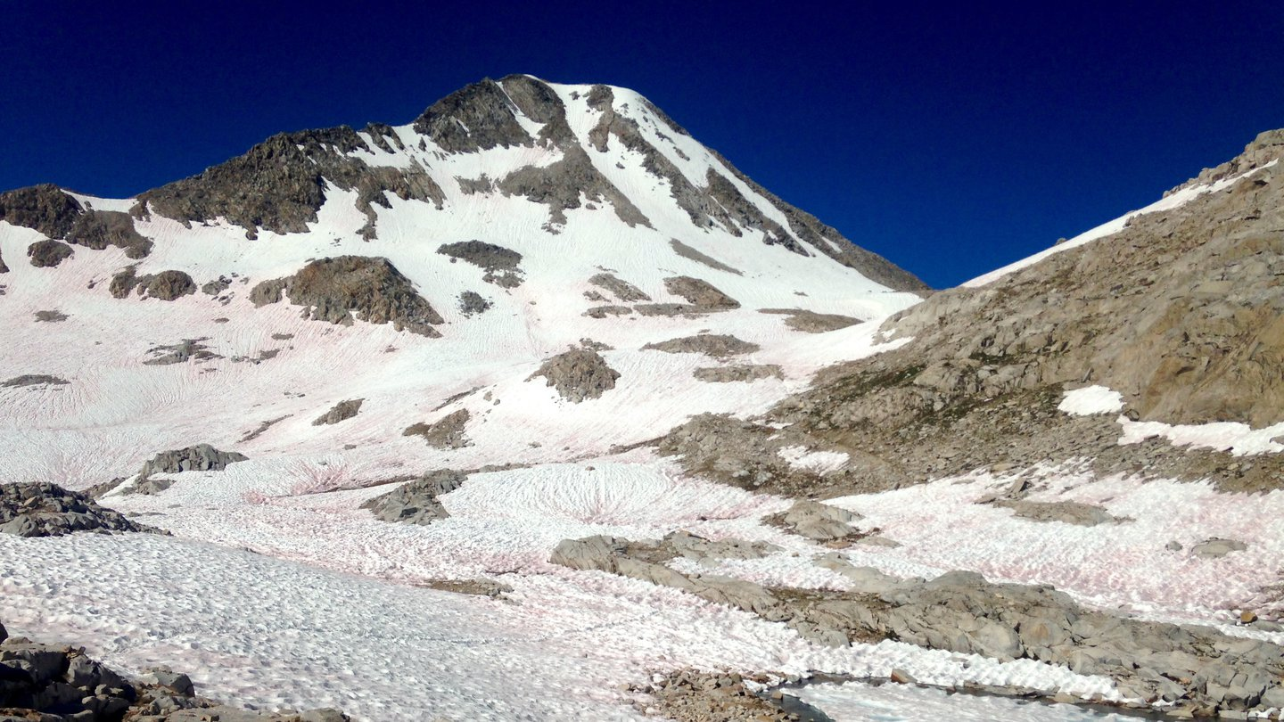 Snow with melt pools covers Muir Pass. Sharp gray peaks stick out of the snow.