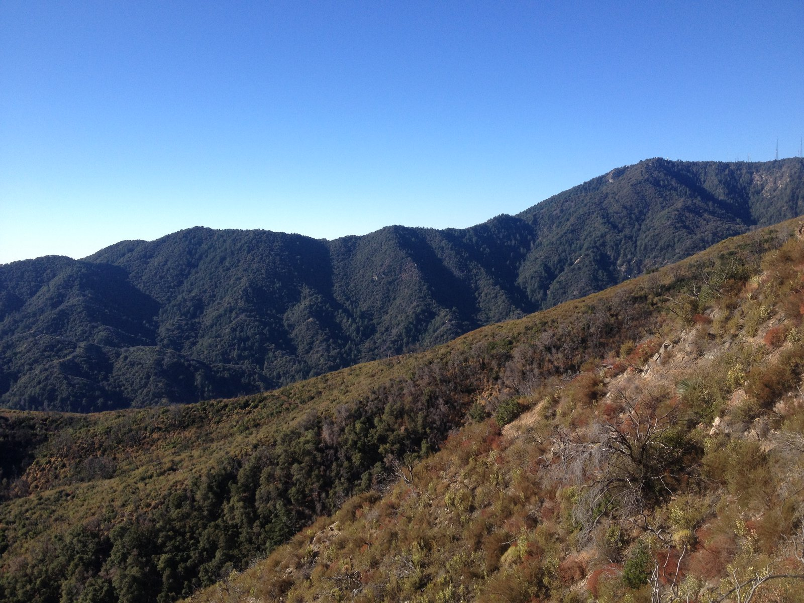 Newcomb Pass on the ridge of Mt. Wilson, from the north.