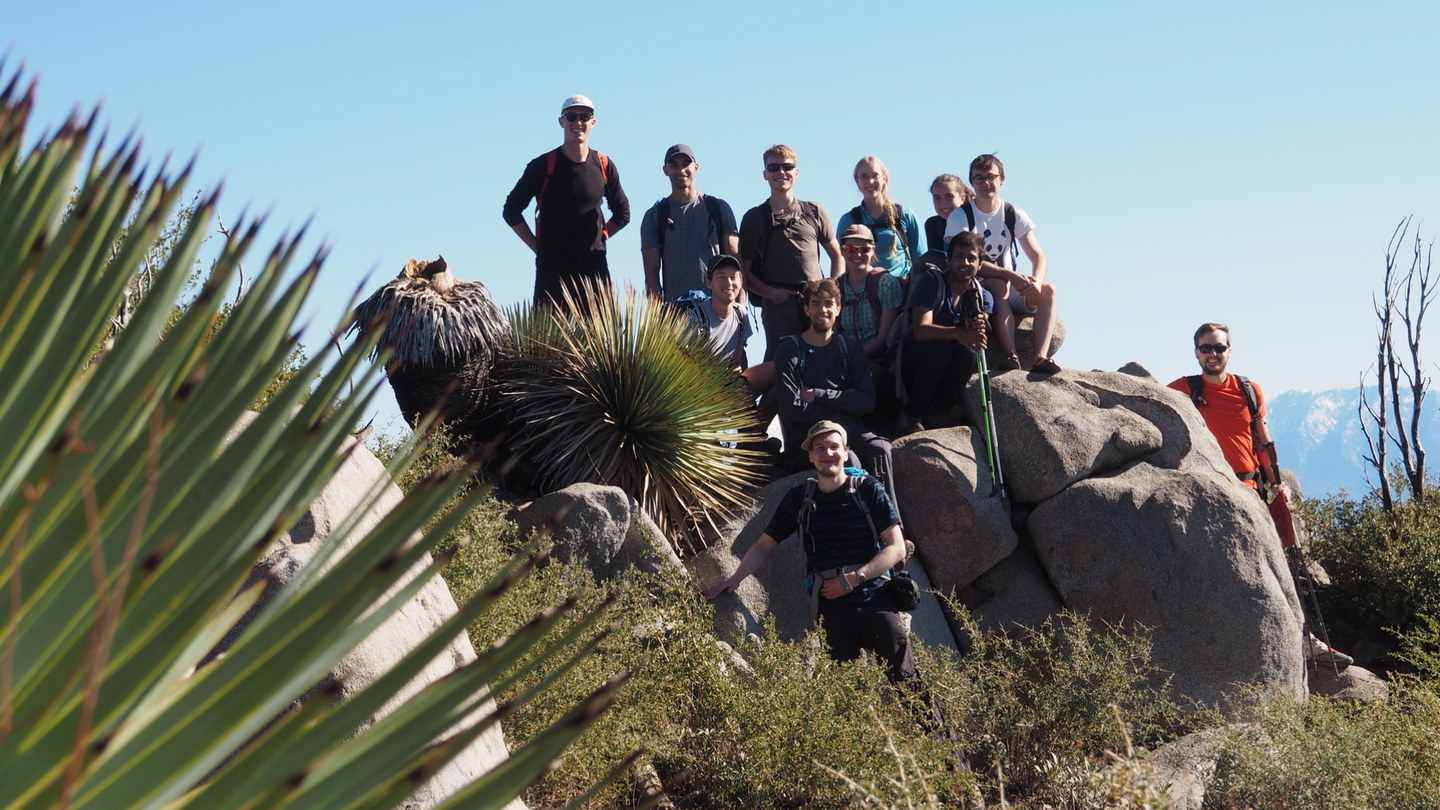 A group of happy hikers sitting on a peak on a sunny day. A spiky native yucca plant covers a corner of the image