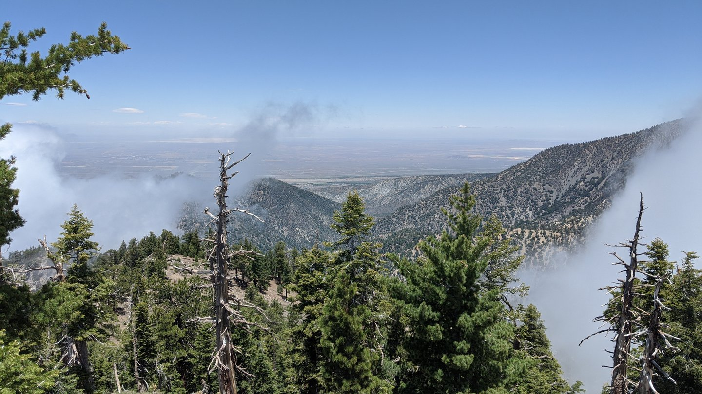 View down a mountain hill. The Mojave desert is in the background, and fog is rolling over the hills.