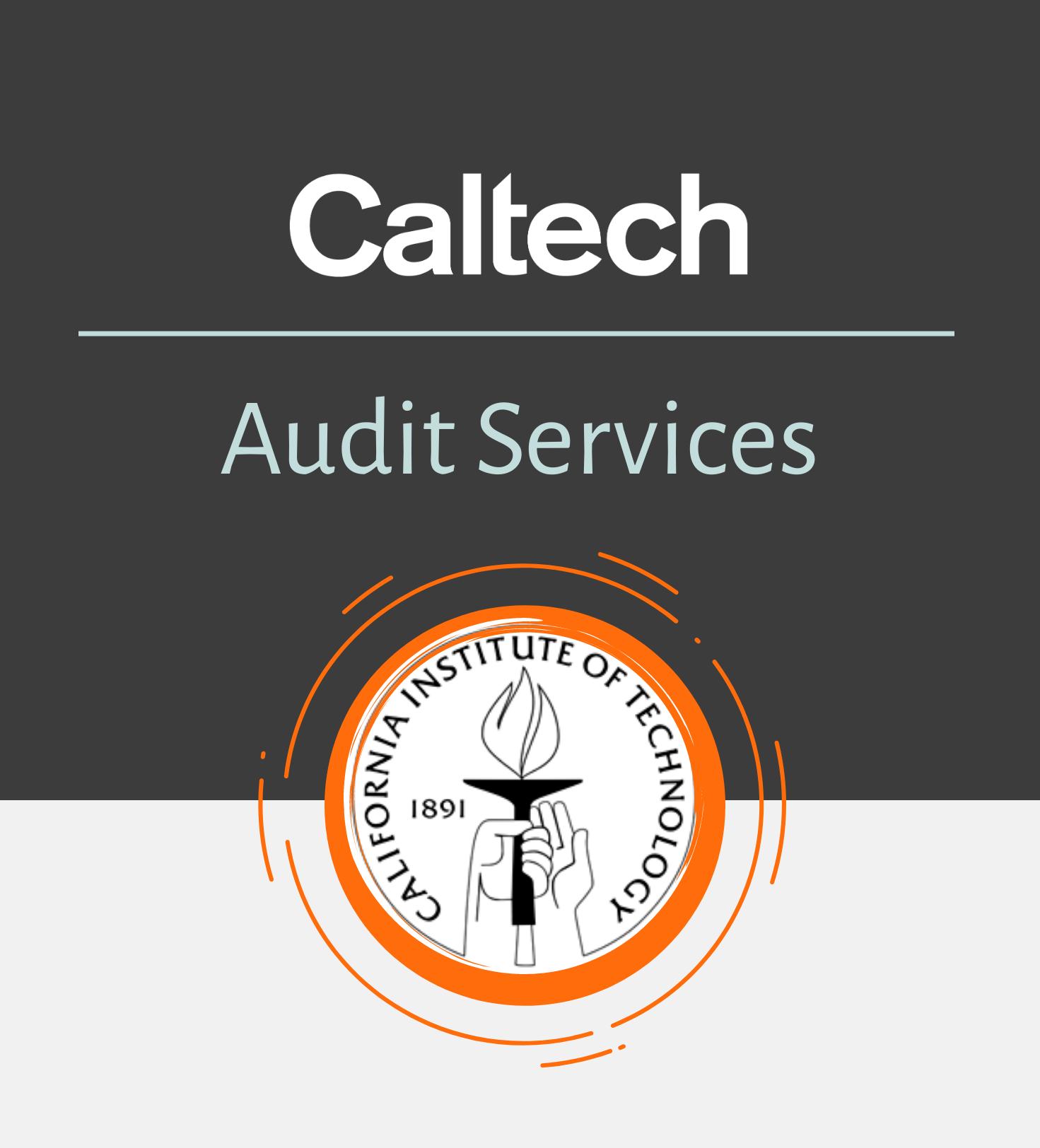 Audit Intro