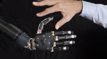 andersen hand and robo hand