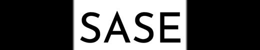 Schmidt Academy logo