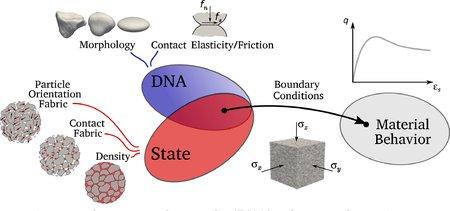 We use the concept of DNA to obtain granular behavior using computer models called LSDEM