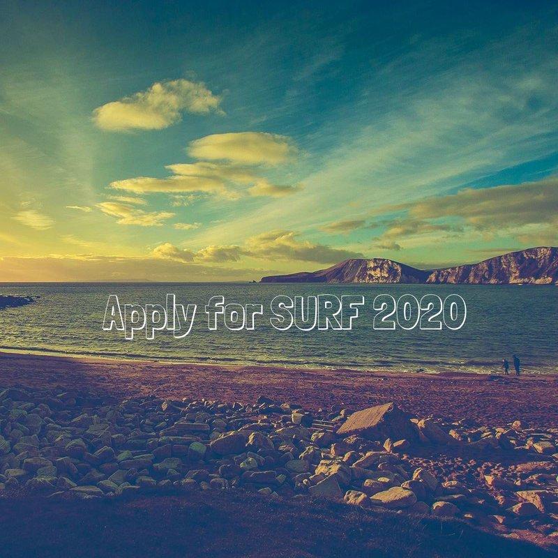 surf ad