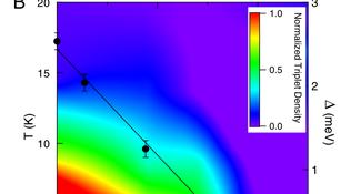 SCBO phase diagram