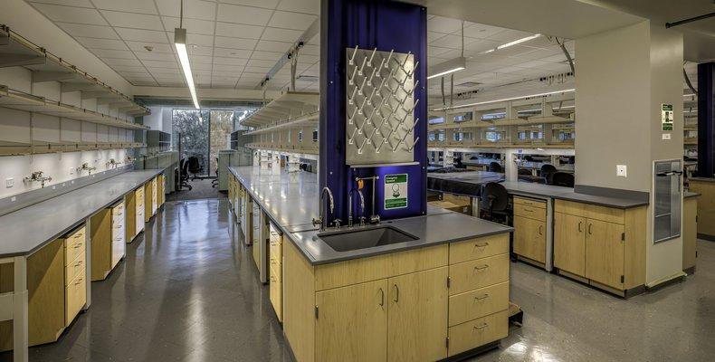 CNRB Lab Area