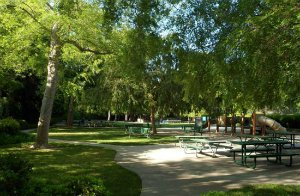 photo of Caltech's Tournament Park