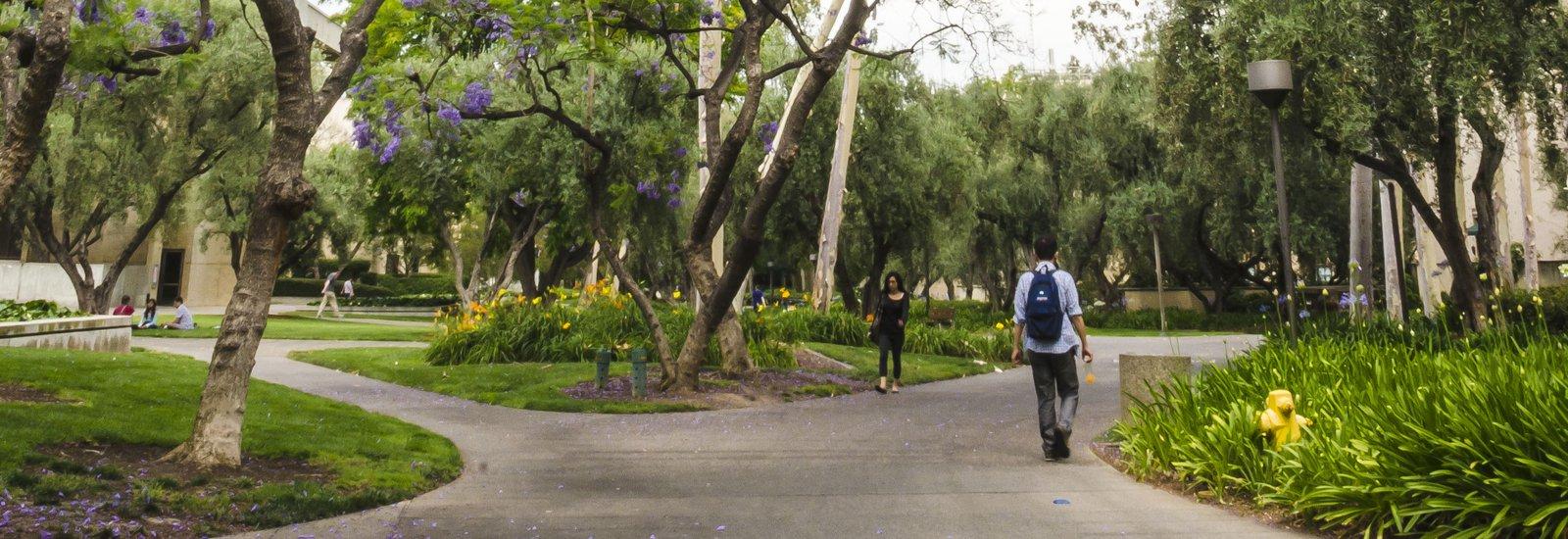 San Pasqual Walk