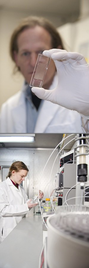Lab work at Caltech