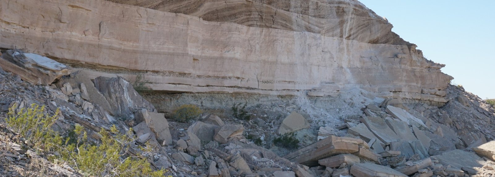 A cliff outcrop of rock formation, with large scale cross bedding.