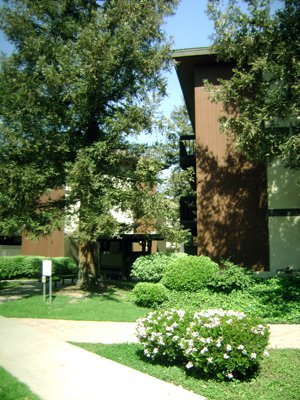 Picture of the Catalina apartments