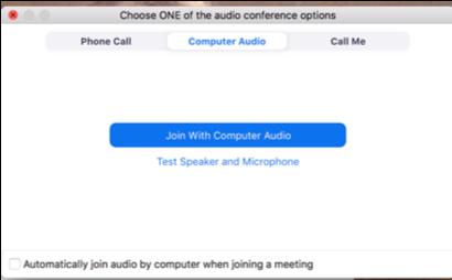zoom meeting audio options