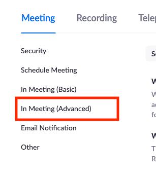 zoom In meeting (advanced) settings