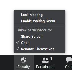 zoom lock meeting options