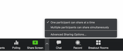 zoom screen sharing options