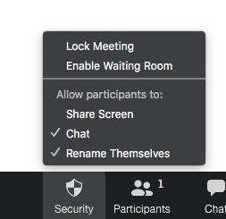 Zoom Security Options Menu