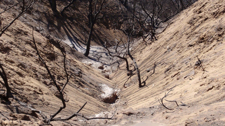 Post-wildfire sediment yield