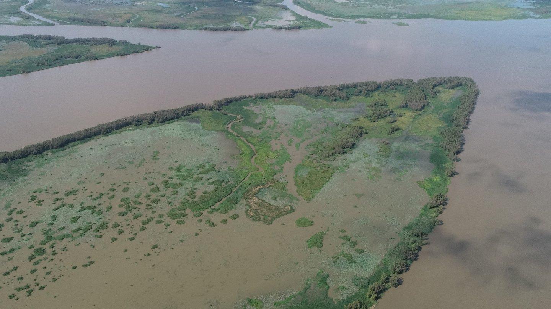 River delta land building