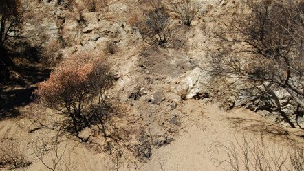 Wildfire and debris flows