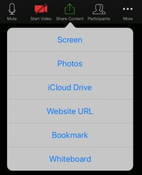 Share content menu Zoom iPad