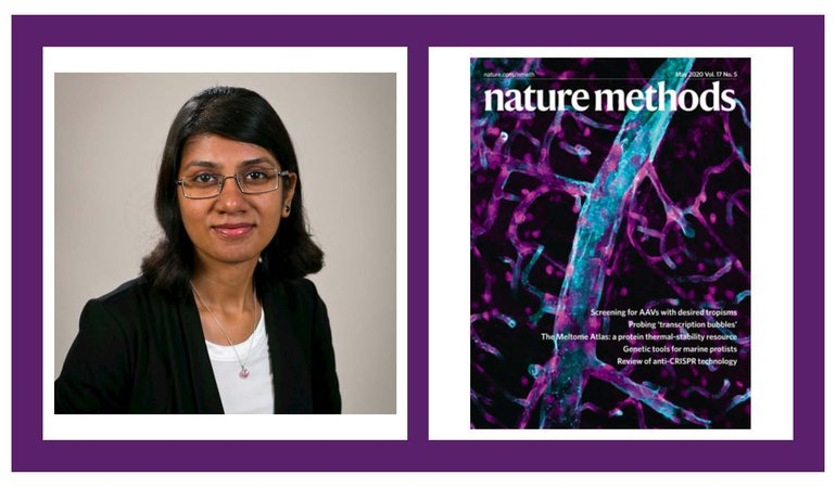 Headshot of Dr. Priya Kumar side by side with cover of Nature Methods, May 2020.