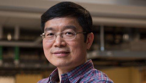 Headshot Lihong Wang