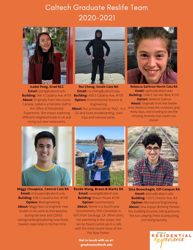 Grad Reslife team flyer