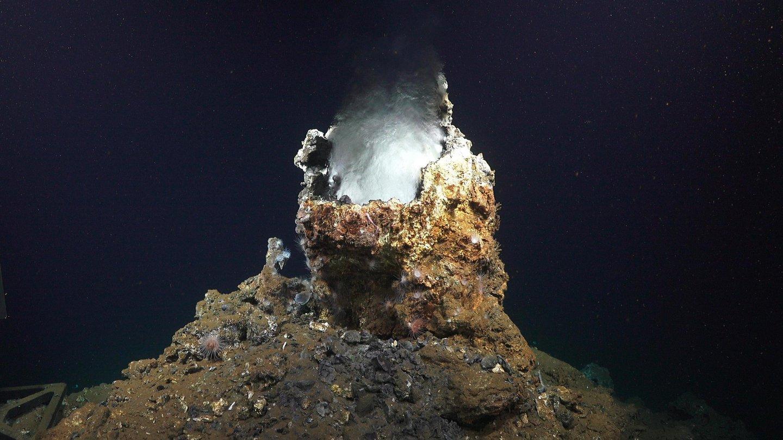 carbonate methane seep