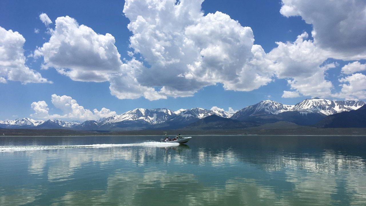 mono lake field