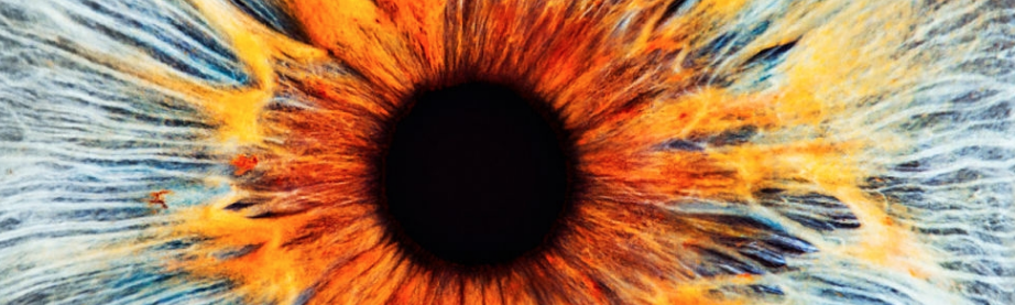 close-up photo of an eye
