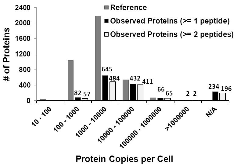 number of proteins identified
