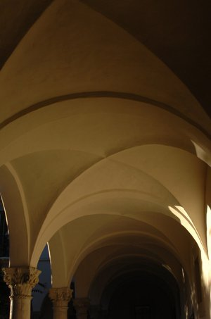 arches between ricketts and fleming house