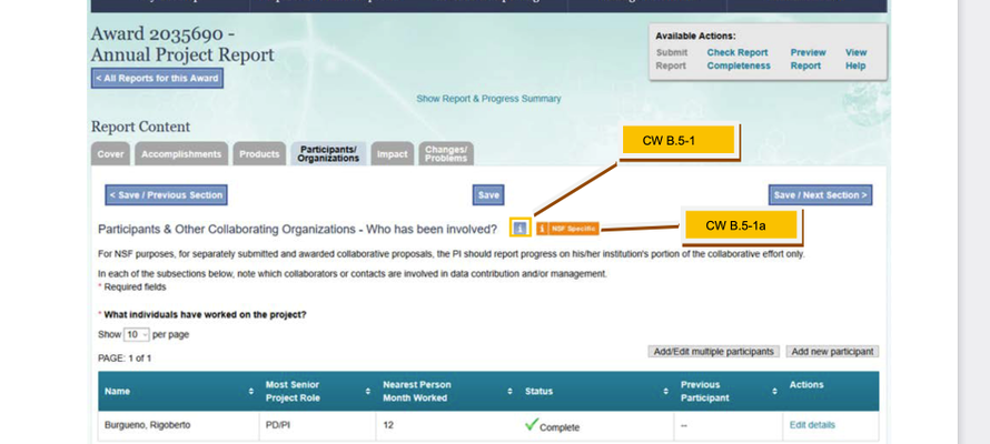 Screenshot from NSF 1.13 B.5 PI Report Entry Participants