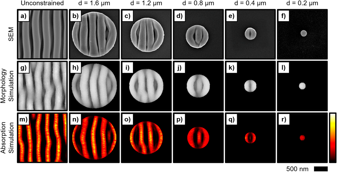 SEM image of ordered Se-Te growth