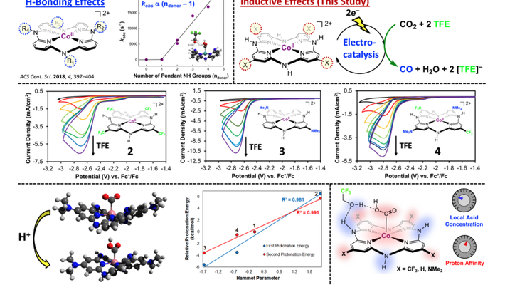 Incorporation of hydrogen bond donors into the framework of cobalt aminopyridine macrocycles has been demonstrated to increase the rate of reaction for electrochemical CO2 reduction. Now further work has shown that electronic inductive effects imparted from chemical modification can influence catalysis through an orthogonal axis. Combined experimental and theoretical work suggests these inductive effects play a role in the basicity of critical reaction intermediates in the catalytic cycle. Credit: Reprinted with permission from Inorganic Chemistry. DOI:10.1021/acs.inorgchem.0c02086  (2020) American Chemical Society.