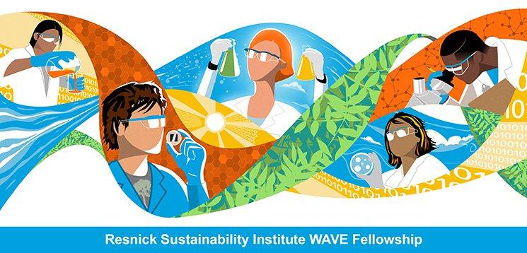 WAVE Fellowships