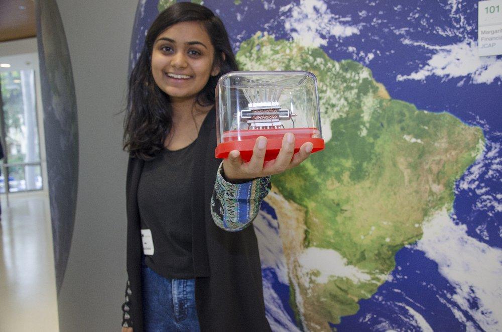 Student Cleantech Entrepreneur