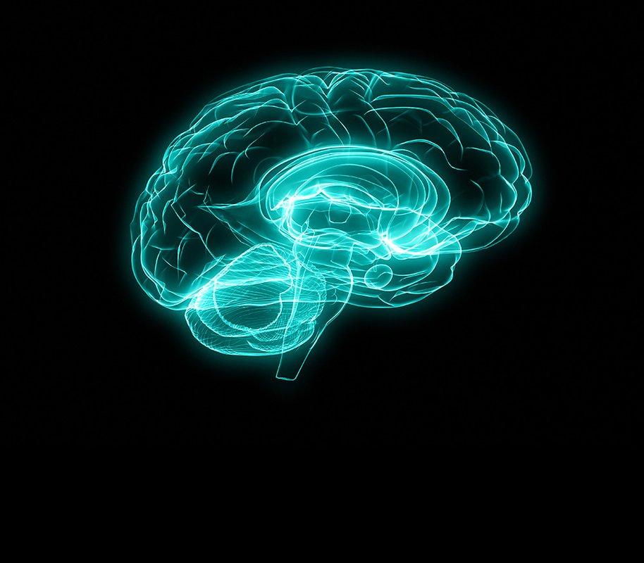 Design of brain