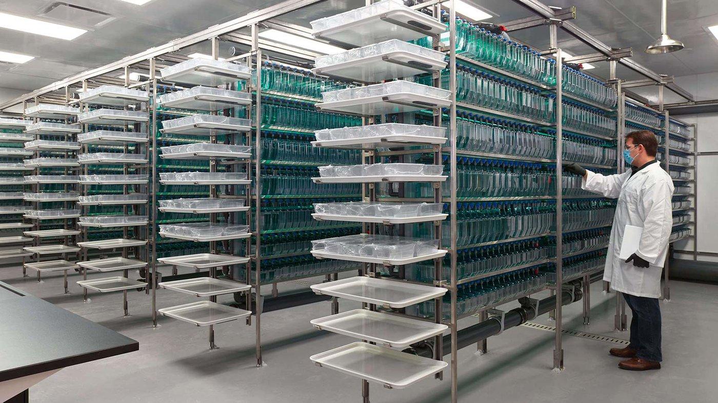 Chen Institute Laboratory