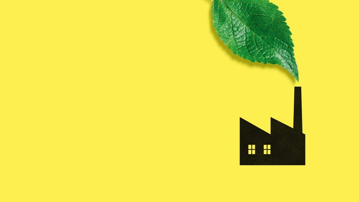 graphic showing building and large leaf on yellow background