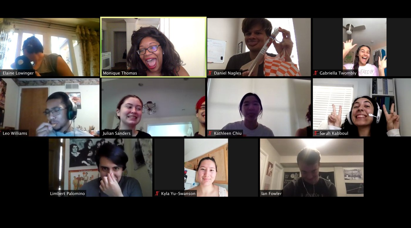 Screenshot of FSRI students on Zoom