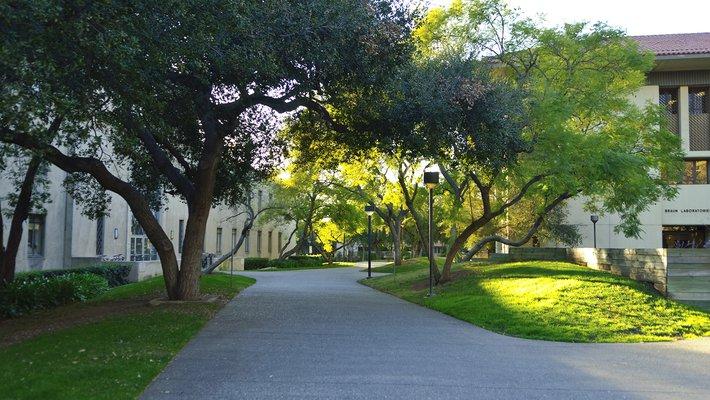 Caltech campus.