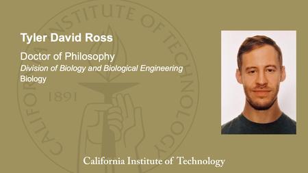 Tyler David Ross