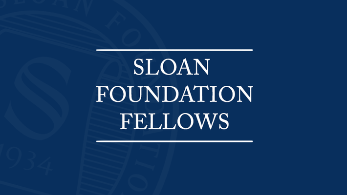 Sloan Foundation Fellows