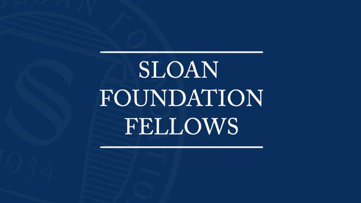 Sloan Foundation Fellows
