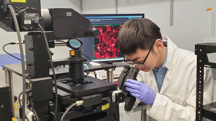 Graduate student Jiajun Du takes a stimulated Raman image of melanoma cancer cells in the lab.