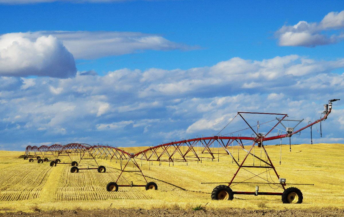 Irrigation equipment sits in a field of hay